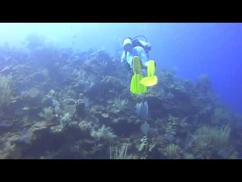 Wall diving in Grand Turk, Bohio Dive Resort, 6.30.15
