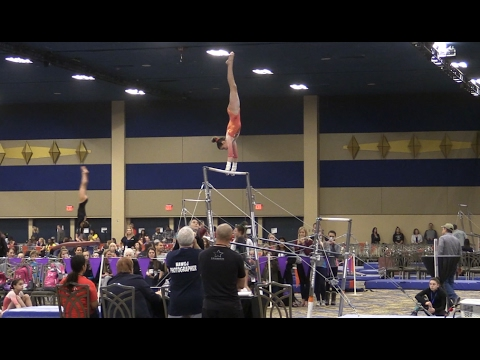 brestyans invitational 2014 meet results for gymnastics