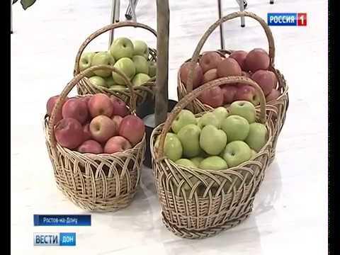 Отзывы о компании Агрохолдинг СТЕПЬ, Ставрополь, — Каталог