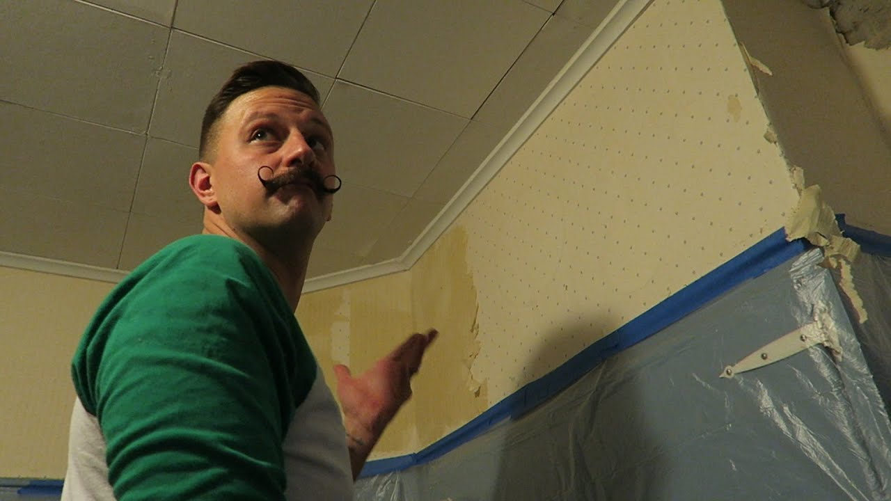 Taking Down 60 Year Old Wallpaper Our Very First YOUsday Mail Vlog 2162016