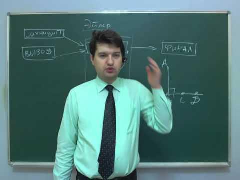 Разбор олимпиады Эйлера по математике, 8 класс