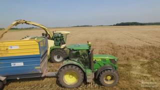 Whole Crop Silage 2016 - JN & DF Holyes and Sons - Agri Contractors
