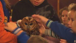 На Международный день инвалидов в зоопарке детям показали спектакль с участием животных
