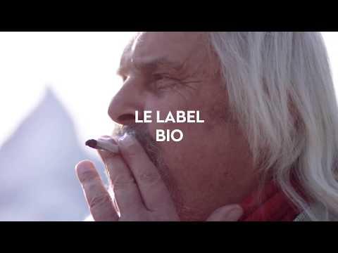 Les Histoires de Bernard: EP7. Le label bio?