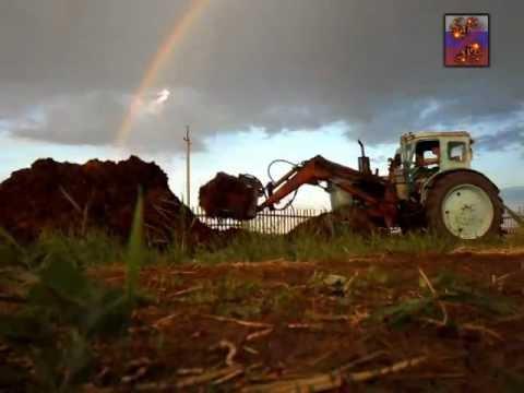 KIOTI CK грузит землю | мини тракторы KIOTI