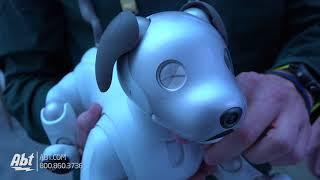 CES 2018 - Sony Aibo Robotic Dog