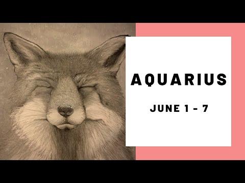 Aquarius ♒️ ... What's Happening Here, Guys? 😂❤️