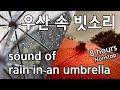 ASMR 🎧 잠잘 때 듣는 우산 속 빗소리 그리고 천둥소리 (8시간) ★ The sound of rain and thunder in an umbrella
