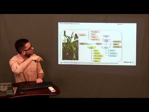 FSC 431 Group 9 Possible Alternatives to Corn Ethanol