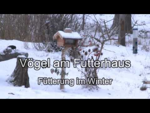 v gel am futterhaus f tterung im winter trailer. Black Bedroom Furniture Sets. Home Design Ideas