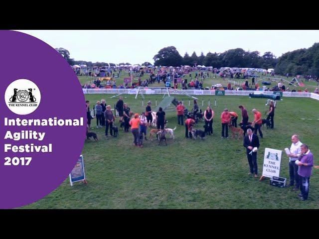 Olympia Semi Final - G3-7 ABC Large Award Ceremony | International Agility Festival 2017