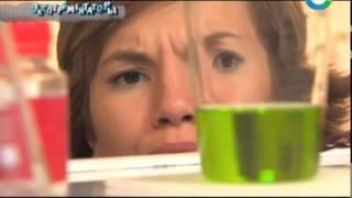 видео Как починить треснувший ствол яблони