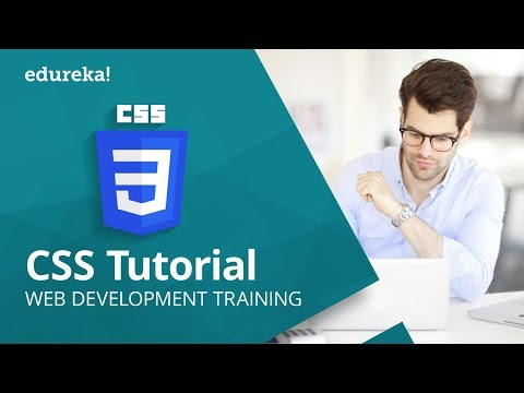 CSS Tutorial For Beginners | CSS Crash Course In One Hour | Web Development Tutorial | Edureka