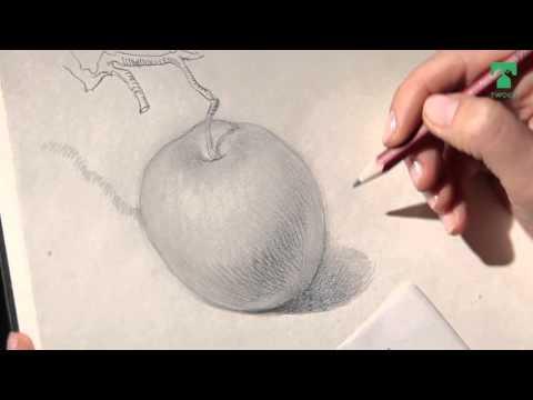 уроки рисования в объеме две недели