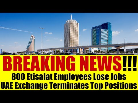 BREAKING NEWS: 800 Dubai Based Employees Terminated Today!!!