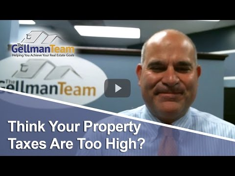 St. Louis Real Estate Agent: Think Your Property Taxes Are Too High?