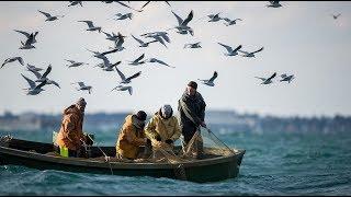 Япония заявила протест России из-за штрафа рыбакам | Новости Лайф