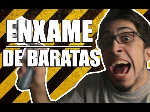 UM ENXAME DE BARATAS