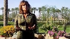 Carola Eastwood talks about Chetan Parkyn and Human Design