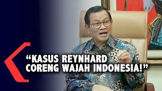 Istana: Kasus Reynhard Sinaga Mencoreng Wajah Indonesia!