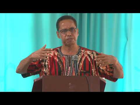 David Comissiong - Caribbean First Peace Conference
