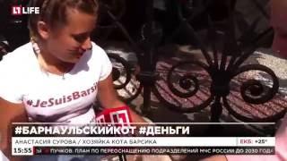 Народный мэр Барнаула кот Барсик прилетел в Москву на одиночный пикет