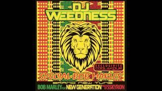 New Génération & Bob Marley remix dub step by SSkyron ( EXCLU COQLAKOUR )