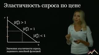 эластичность: определение и формулы