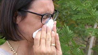 Comment se soigner contre les allergies ?