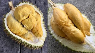 EATING THE BEST DURIAN IN THAILAND!