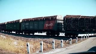 Военная техника КИТАЯ двигается уже в РФ, а древесина из РФ