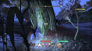 The Elder Scrolls Online: Tamriel Unlimited - PVP in Cyrodiil. Lightning form!!