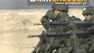 豊和工業 89式5、56mm小銃