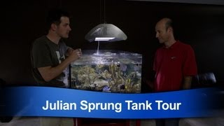 Mr. Saltwater Tank Tours Julian Sprung