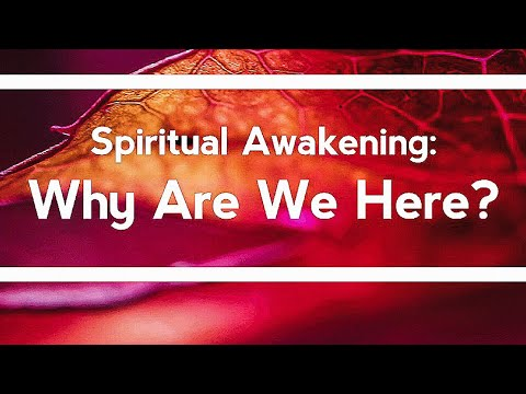 WHY AM I HERE?  (WHAT IS SPIRITUAL AWAKENING) - EXPLAINED IN LESS THAN 3 MINUTES -
