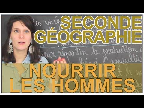 Nourrir les hommes -  Histoire-Géographie - Seconde - Les Bons Profs
