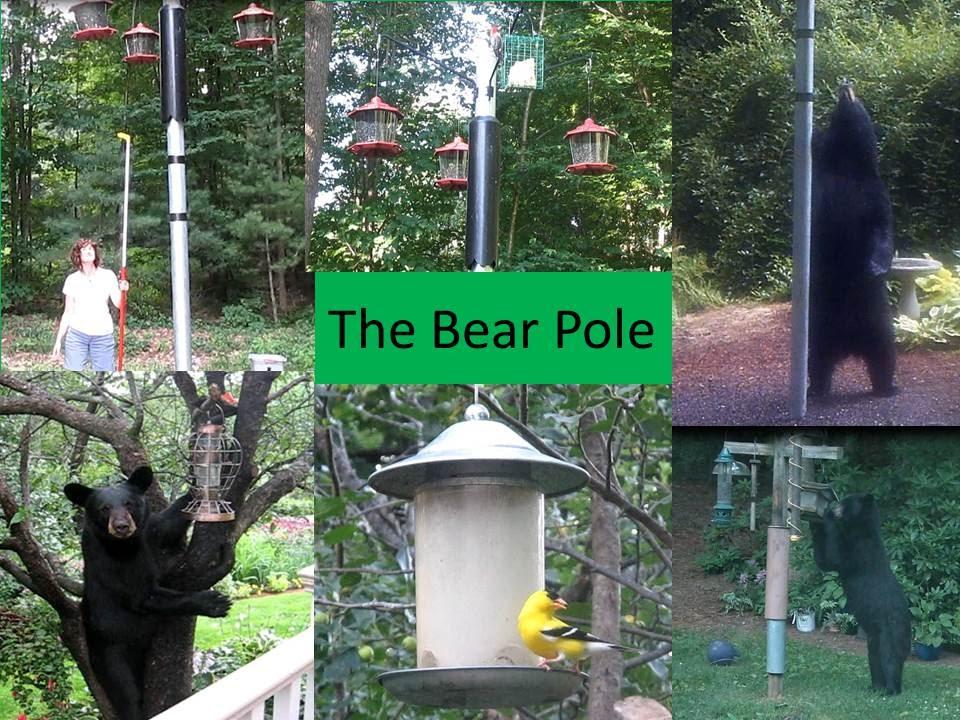 Bear Proof Bird Feeder Poles | Prevent Bears From Eating