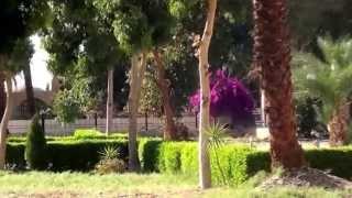 Viaje a Egipto del 26 de febrero al 12 de marzo del 2014