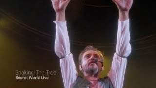 Peter Gabriel - Shaking The Tree (Secret World Live HD)