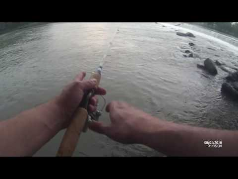 Short Trip to the  Tuscarawas  River  to TEST  Lures