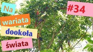 # 34 Honduras