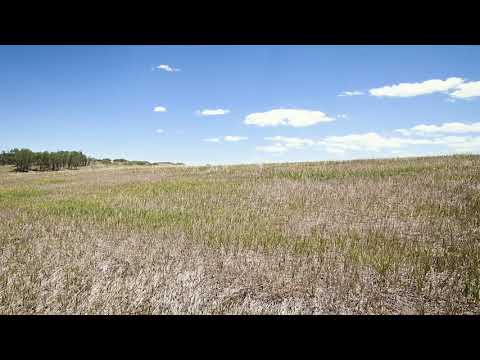 0.29 Acres – In Colorado City, Pueblo County CO