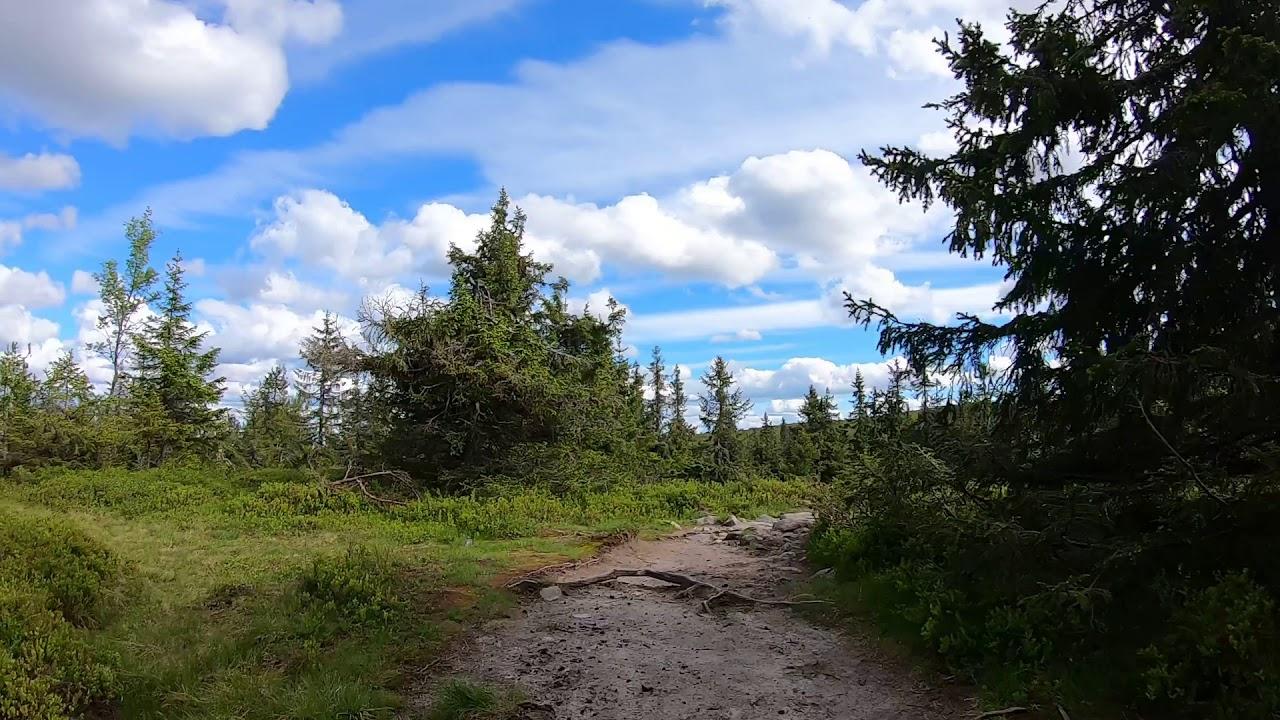 Visitsjusjoen Bike 07