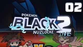 THE BIG CITY! GYM 3 AND NUZLOCKE FAILS! Pokemon Black 2 Nuzlocke LIVE!