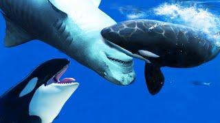 Orca vs Tiburón | ¿Quién Ganaría? | EPIC VERSUS