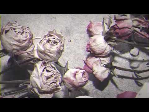 Pushover - Dark Places (Official Lyric Video)