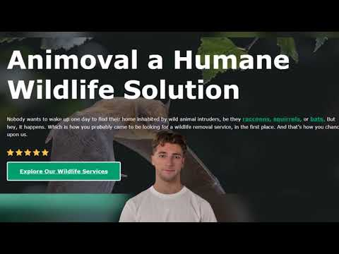 The Most Humane Way to Remove Animals from Your Property
