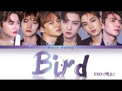 EXO(엑소) - BIRD (Color Coded Lyrics Kan/Rom/Eng/歌詞)