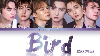 EXO (엑소) - BIRD (Color Coded Lyrics Kan/Rom/Eng/歌詞)