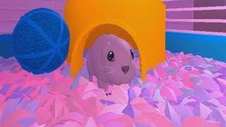 ROBLOX: I BECAME A GUINEA PIG!! (Guinea Pig)